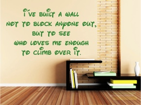 I've built a wall not to block anyone out, ... ...